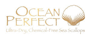 CBP Ocean Perfect 4c 3d logo