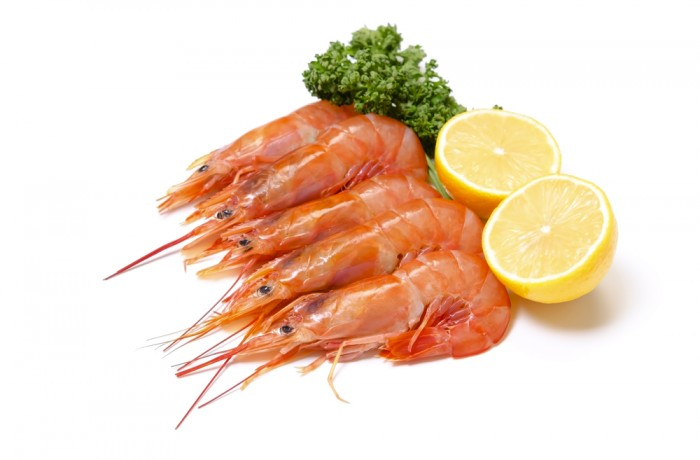 argentine-shrimp-700x460 jpg
